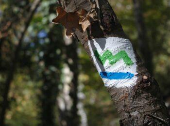 VERSCHIEDENE LäNDER: Wandern: Die südliche Etappe des Baldeneysteig in Essen