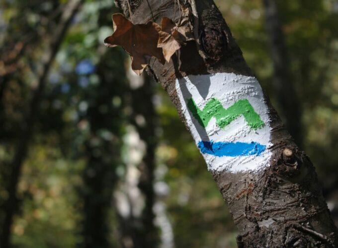 Wandern: Der südliche Teil des Baldeney-Steigs