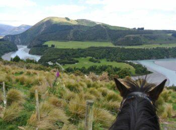 Mit dem Pferd durch das neuseeländische Christchurch