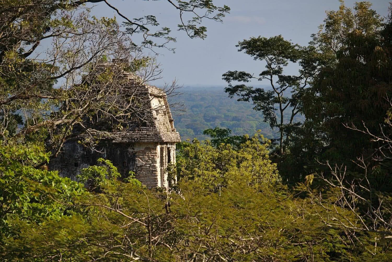 Weltreise: Palenque – Wasserfälle und Ruinen im Dschungel