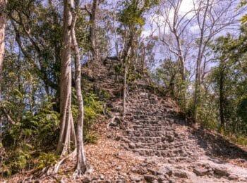 ASIEN: El Mirador: Warum wir in Guatemala 6 Tage durch den Dschungel wanderten
