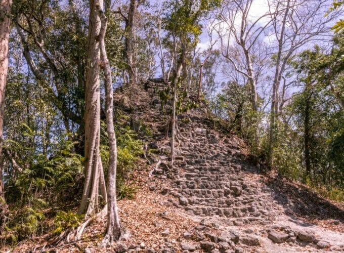 El Mirador: Warum wir in Guatemala 6 Tage durch den Dschungel wanderten