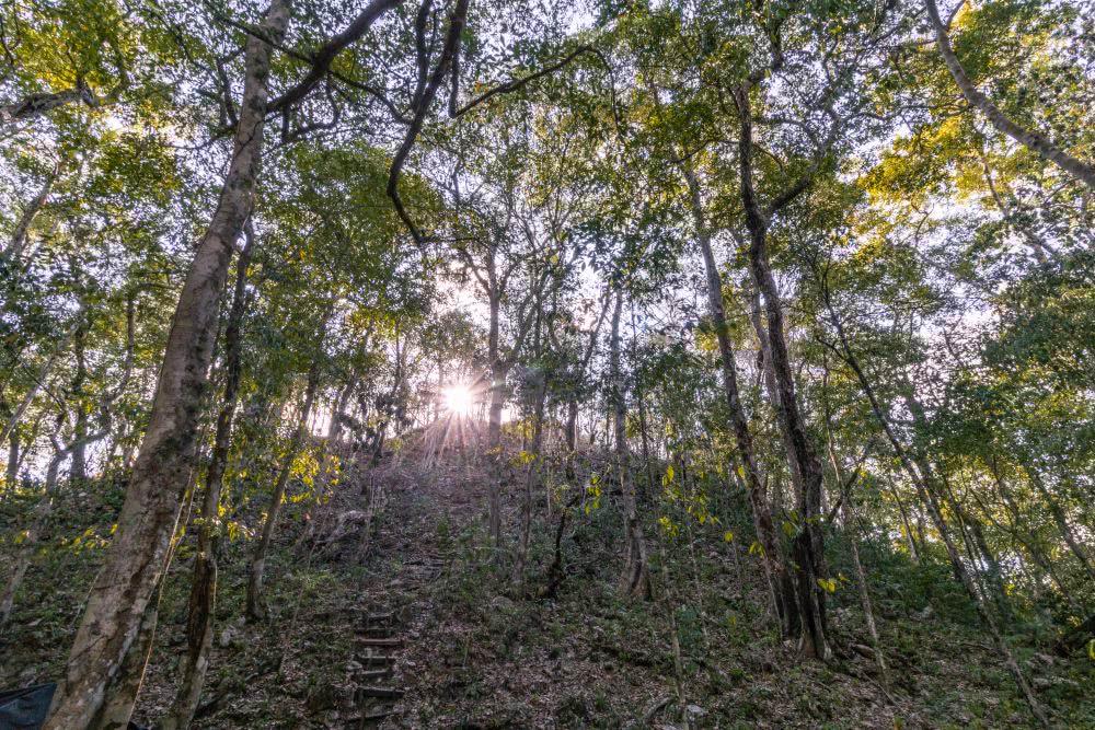 Guatemala So verborgen sind die Maya-Ruinen in El Mirador bei ihrer Entdeckung