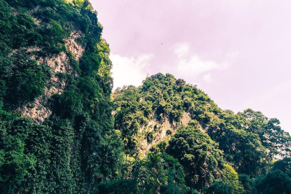 Malaysias Kalksteingebirge wirkt schon ganz schön beeindruckend