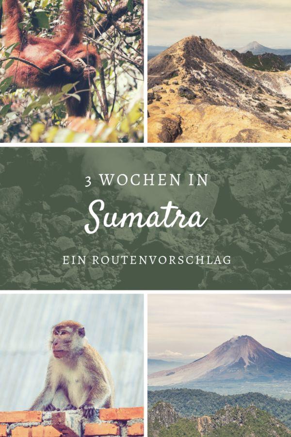 %23Route %23Südostasien %23Weltreise %23Sumatra %23Indonesien Unsere Backpacking-Route durch Sumatra Die indonesische Insel Sumatra ist die sechstgrößte Insel der Welt und liegt nicht weit von Malaysia entfernt. Wir haben die Herausforderung angenommen und sind in drei Wochen vom Norden in den Westen gefahren. Dabei haben wir leider nur einen kleinen Teil von Sumatra gesehen. Definitiv war es aber die beste Mischung aus Dschungel (Bukit Lawang), aus Vulkanen (Berstagi) und einem mä...