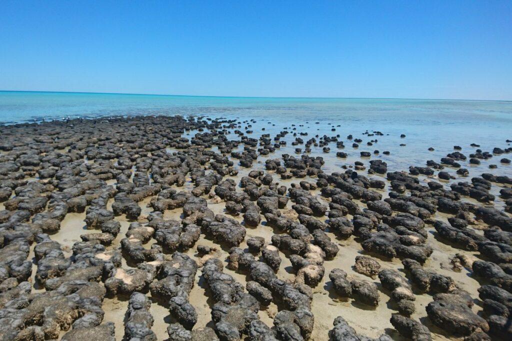 Westaustralien: 12 außergewöhnliche Strände 14