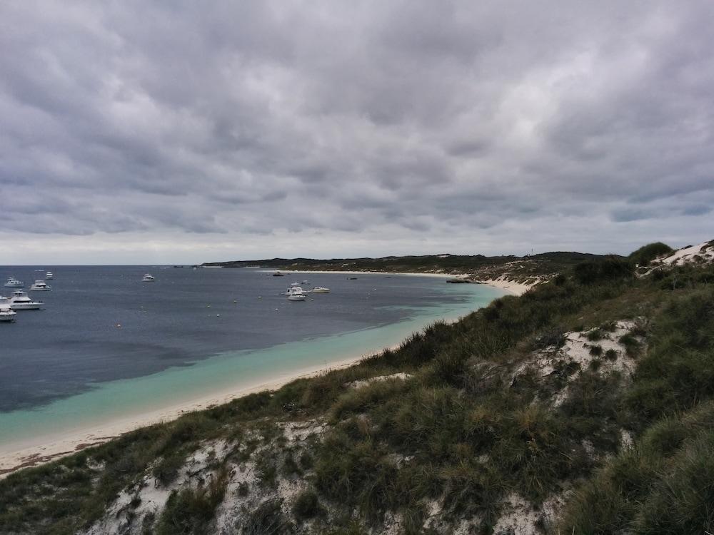 Lieblingsplätze: Quokkas!!! Und Rottnest Island 2