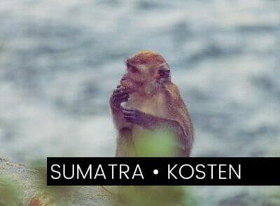 INDONESIEN: Backpacking-Kosten auf Sumatra: So viel haben wir ausgegeben