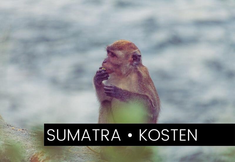 Backpacking-Kosten auf Sumatra: So viel haben wir ausgegeben