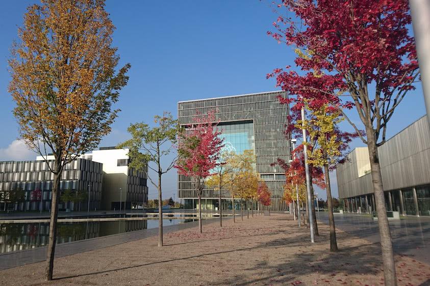 Herbst am Quartier Thyssenkrupp