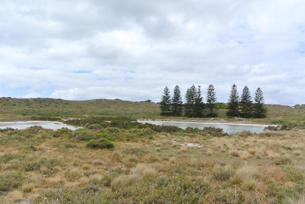 Westaustralien: 6 atemberaubende Nationalparks 20