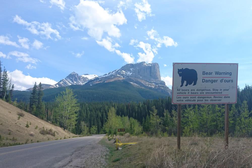 Kanadas Straßenschilder mit Hinweisen zu Bären