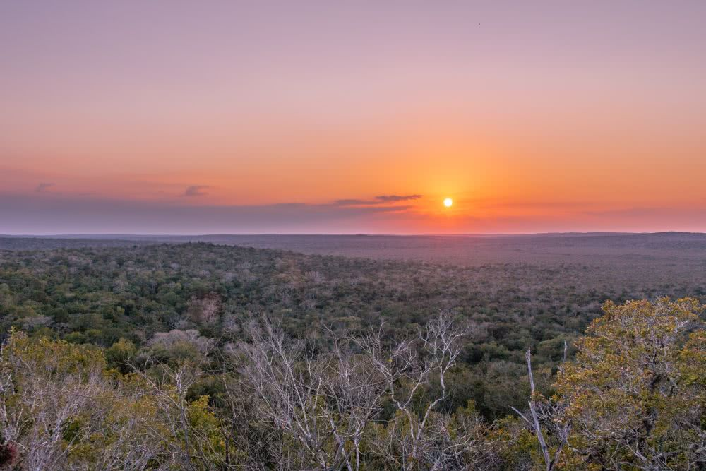 Viele verborgene Maya-Ruinen zum Sonnenuntergang in El-Mirador