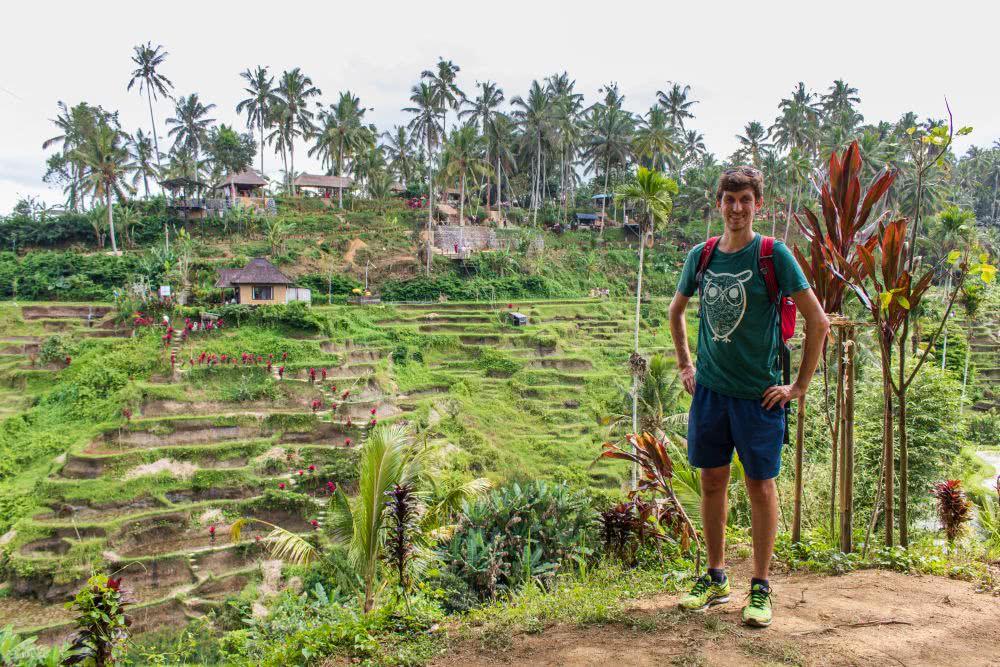 Indonesien Insel Bali Das Sinnbild für Bali: Reisterrassen