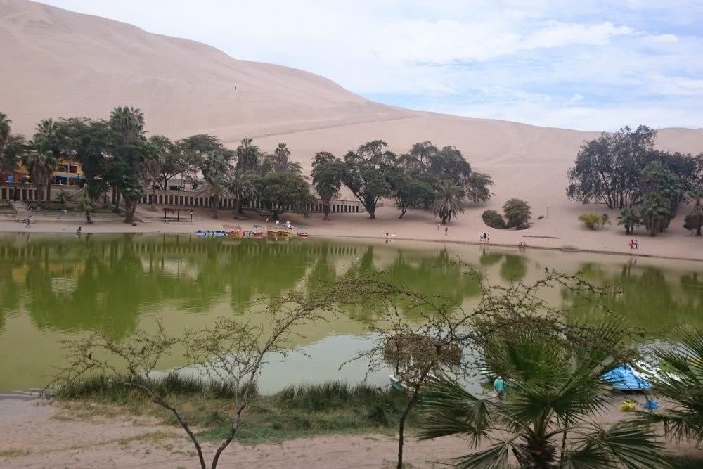 Peru Oase in Huacachina