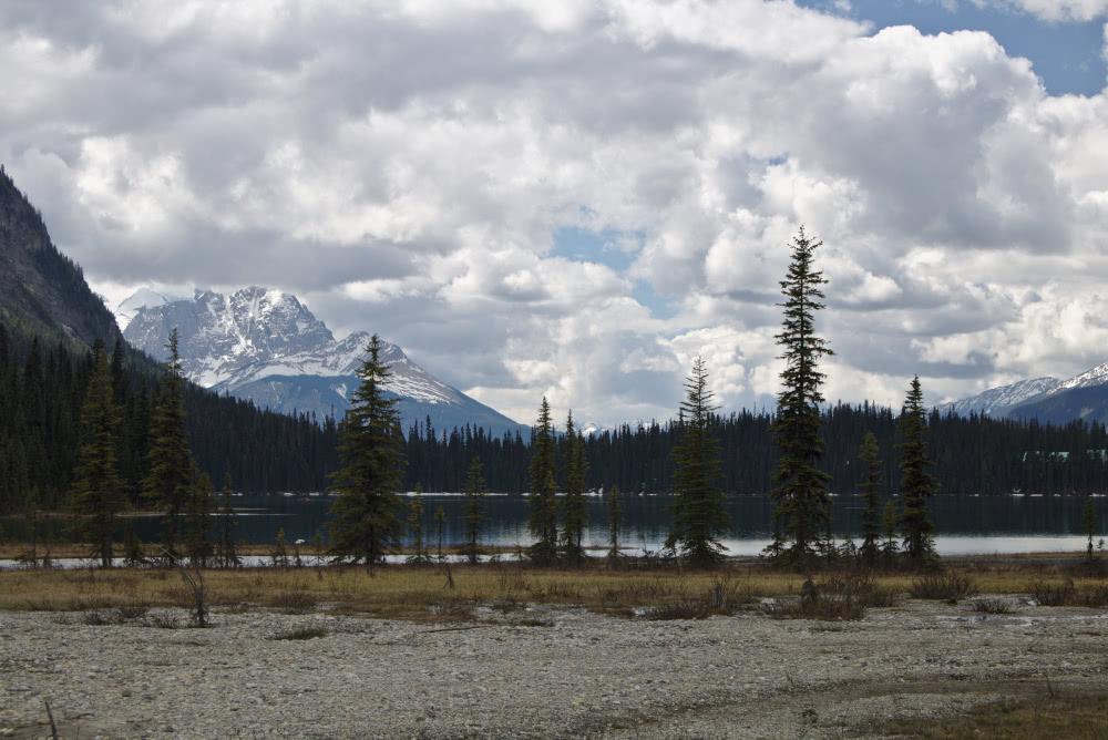 Kanadas Rokies Bei einem Spaziergang rund um den Emerald See entdeckt man das Hinterland
