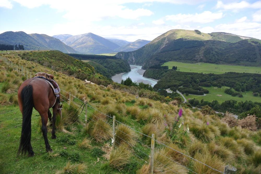 Mein Pferd und diese grandiose Aussicht