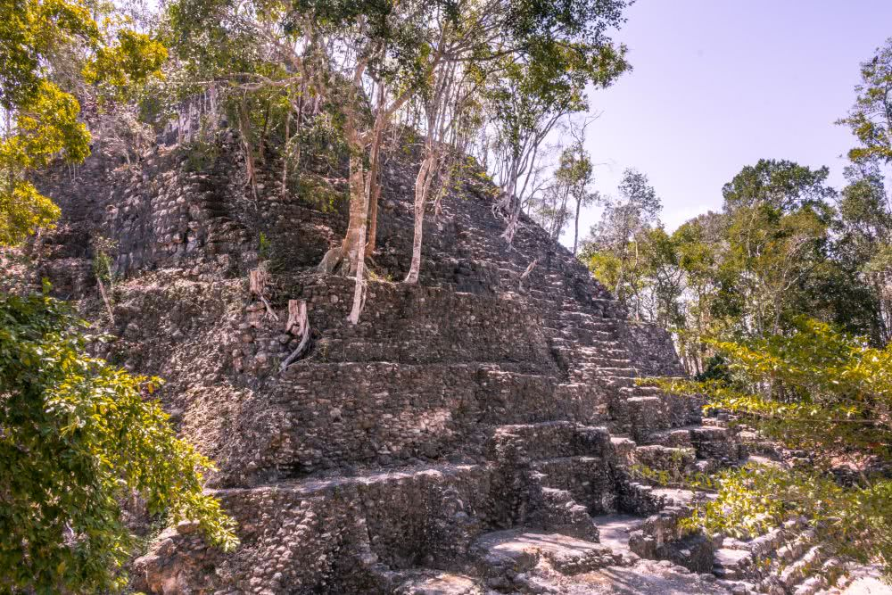 Guatemala Unzählige verborgene Maya Tempel entdeckten wir in El Mirador