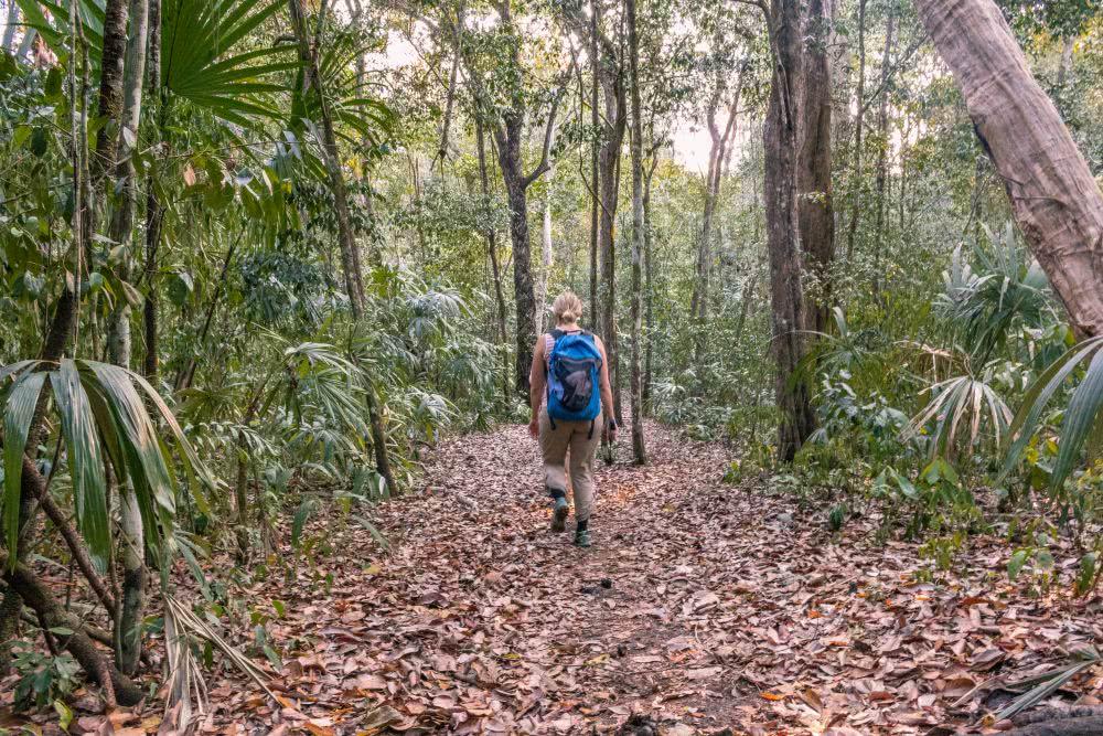 Guatemala Von nun wandern wir täglich viele Kilometer in El Mirador