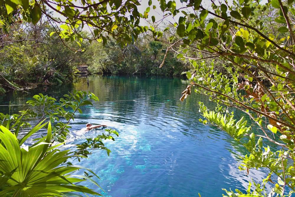 """Die Cenote """"Carwash"""" gleicht einem kristallklarem See in Mitten des Dschungels."""