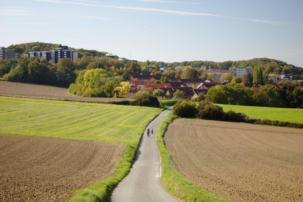 Ein grüner Wanderpfad zwischen Hattingen und Bochum