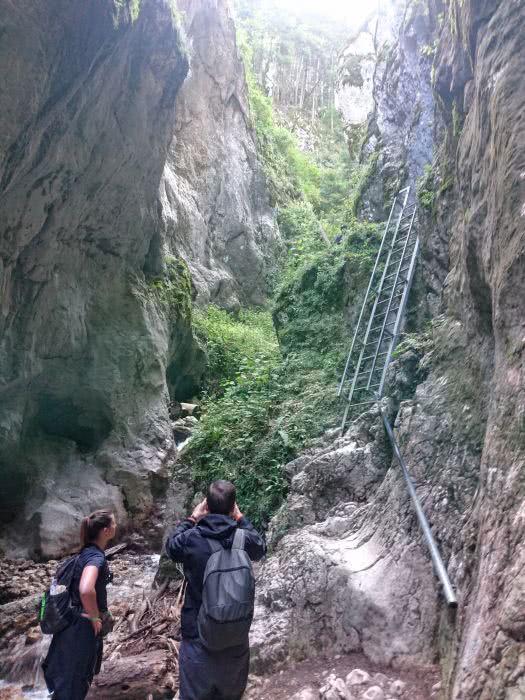 Eine von sieben Leitern auf der Wanderung