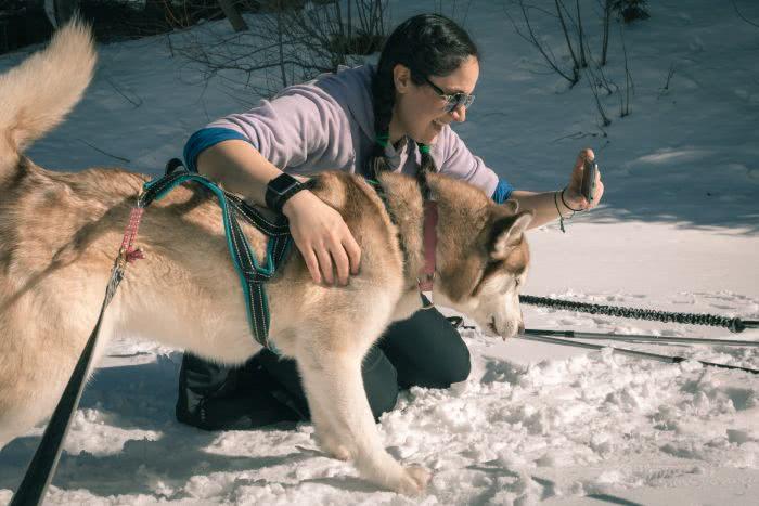 Selfies mit dem Husky im Schnee