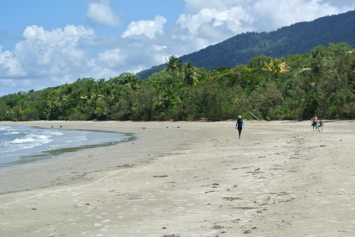 Ein breiter Strand im Daintree Rainforest
