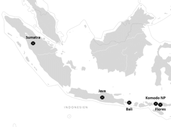 MEXIKO: Indonesien Inseln: Tipps & Reiseroute für Sumatra, Java, Bali & Flores