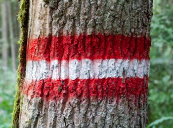 KROATIEN: Österreich: 2 Wochen Roadtrips ▷ 2 Routen zum Nachreisen