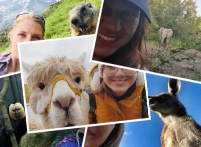 VERSCHIEDENE LäNDER: Lustige Tierbilder & Selfies (Reisebloggern zeigen ihre BestOfs)