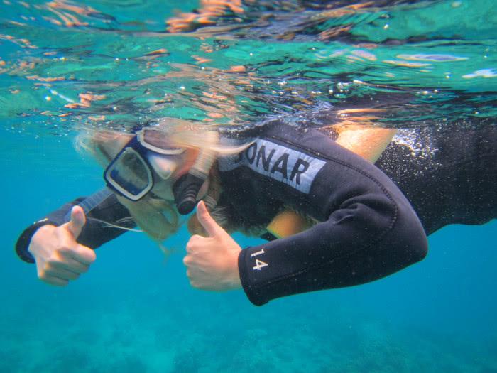 Schorchenln am Great Barrier Reef