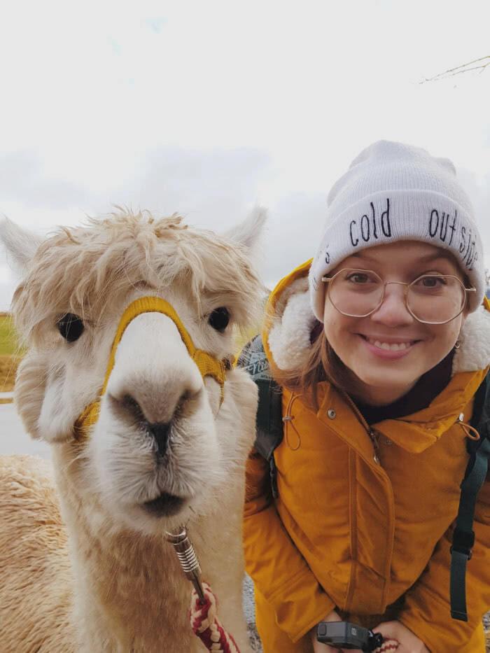 Lustige Tierbilder & Selfies (Reisebloggern zeigen ihre BestOfs) 4