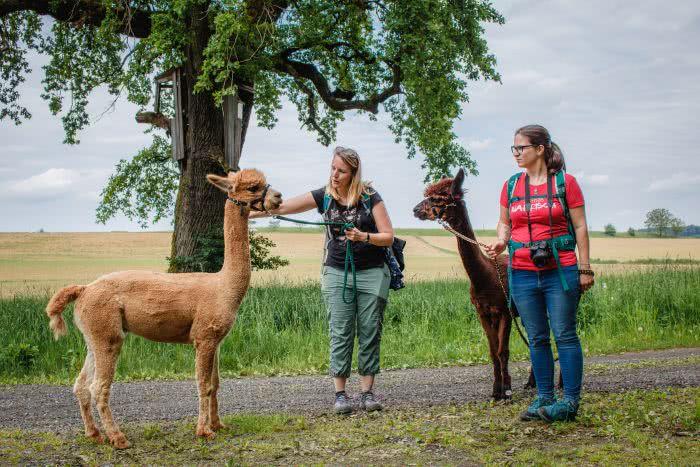 Unser Alpaka Trekking Team Barbara und ich