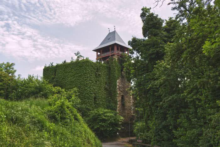 Die romantische Burgruine in Klöch