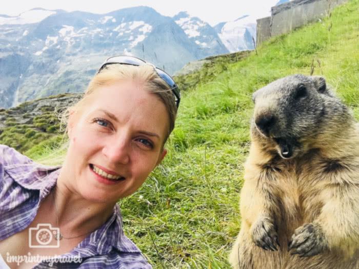 Lustige Tierbilder & Selfies (Reisebloggern zeigen ihre BestOfs) 5