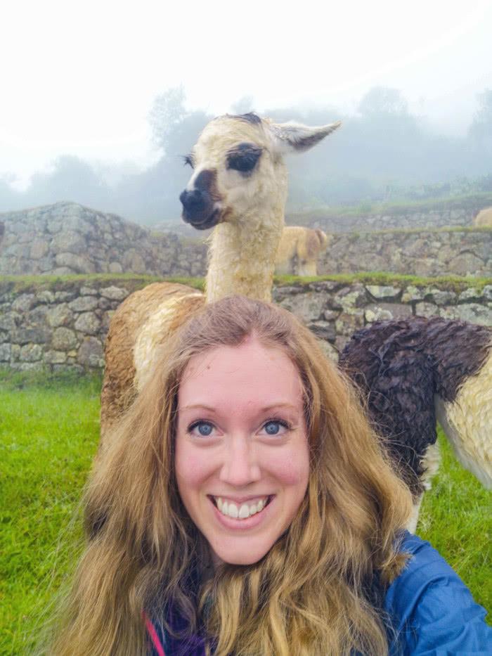 Lustige Tierbilder & Selfies (Reisebloggern zeigen ihre BestOfs) 13