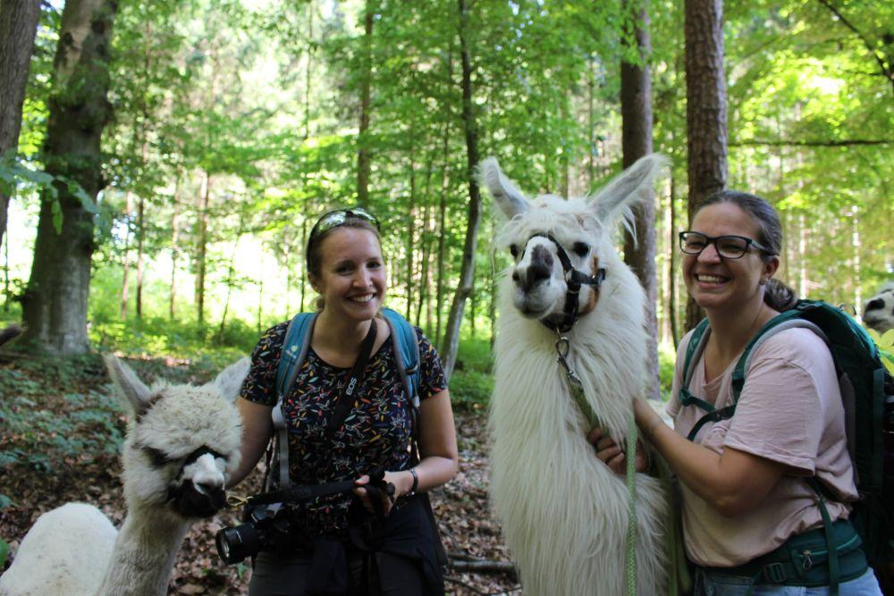 So glücklich macht eine Begegnung mit Alpakas & Lamas