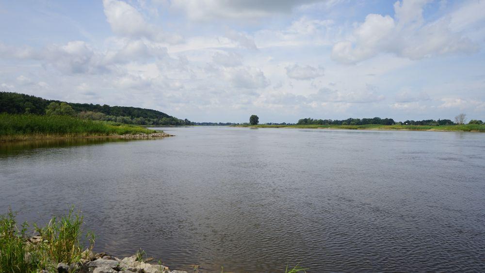Ein Blick auf das Biosphärenreservat Niedersächsische Elbtalaue
