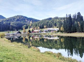 ÖSTERREICH: Was du über den Naturpark Almenland in der Steiermark wissen musst