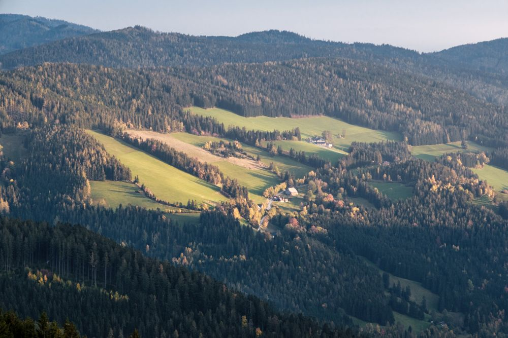 Blick ins Almenland mit all seinen sanften Hügeln