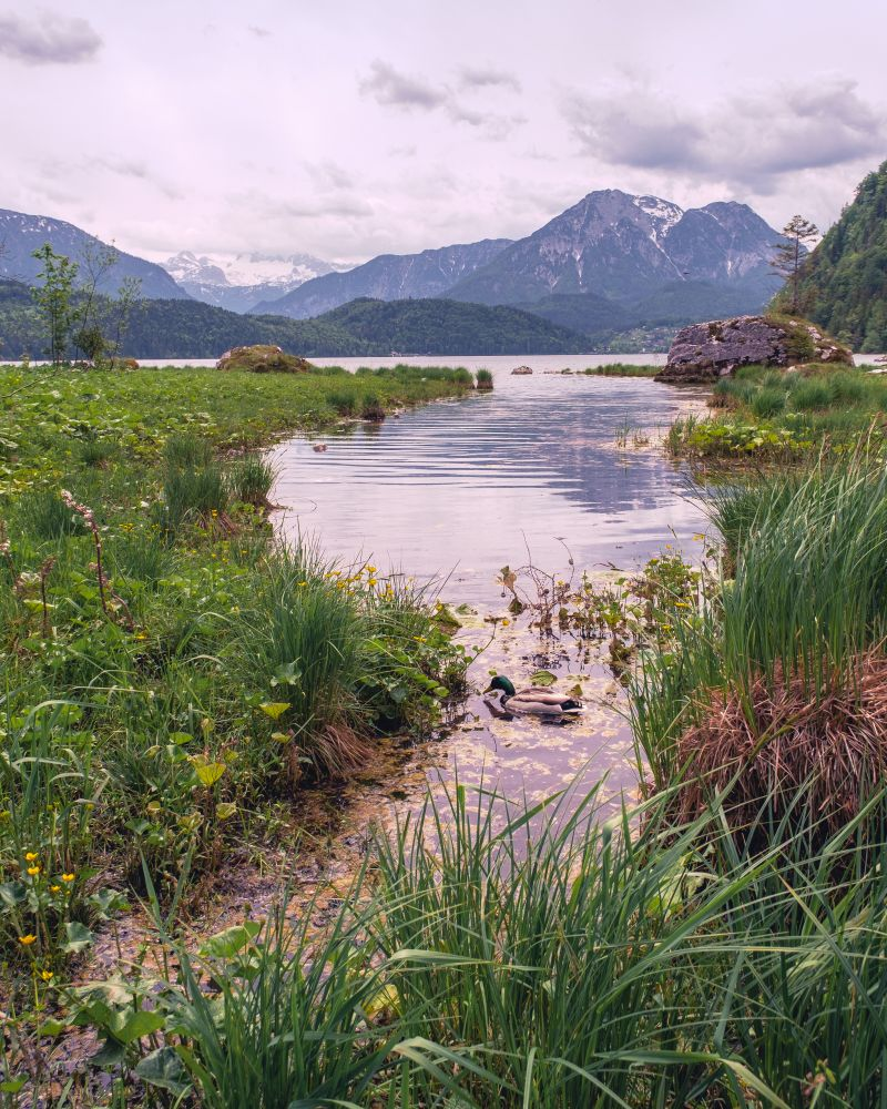 Der Altausseersee gilt als einer der beliebtesten in der Steiermark