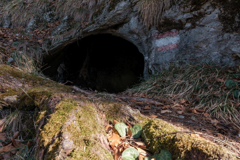 Die Bärenhöhle beim Gamskogel