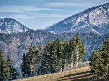 ÖSTERREICH: Wandern im März in der Steiermark | Unsere schönsten 3 Touren