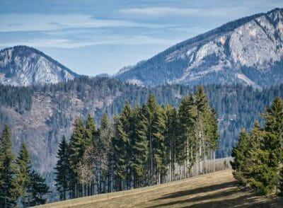 Wandern im März in der Steiermark | Unsere schönsten 3 Touren