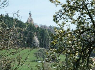 ÖSTERREICH: Pöllau Rundwanderung über Pöllauberg bis zum Masenberg | Naturpark Pöllauer Tal