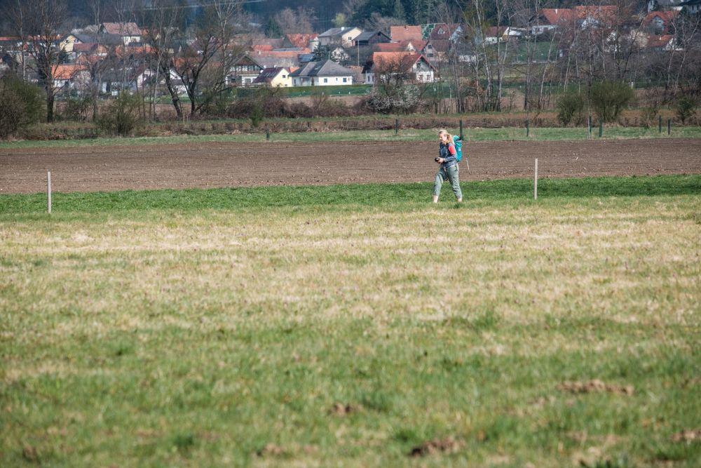 Der Schachblumen-Rundweg in Großsteinbach
