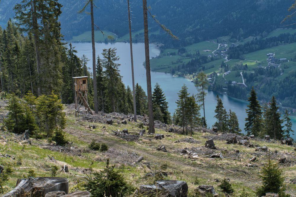Von Hochtraten nach Techendorf mit Ausblick auf den Weissensee