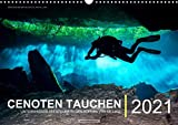Cenoten Tauchen (Wandkalender immerwährend DIN A3 quer)