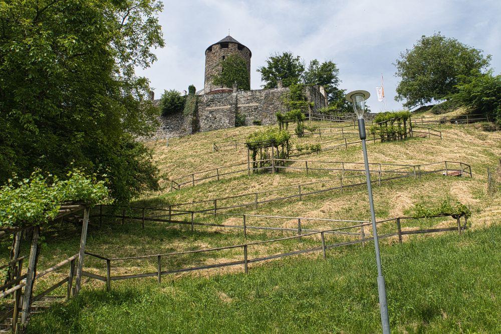 Ausblick auf die Burg vom Tal aus
